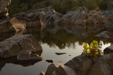 A tranquil pool downstream from the pounding waters of Great Falls.