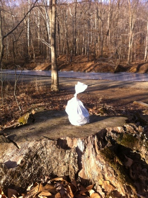 Sitting proud, with the C&O Canal in the background.