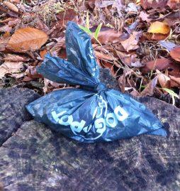 A designer bag proudly sits on an oak stump.
