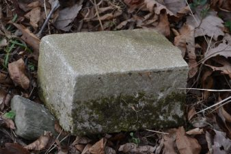 Cleanly cut piece of post looks like concrete, only it's not.