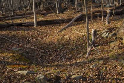 Its just a pit filled with dead leaves. But what about the apparent circle of stones around its perimeter?