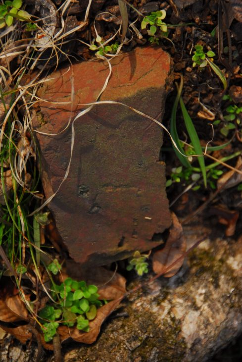 Could a battered old brick mean that a house once stood here?